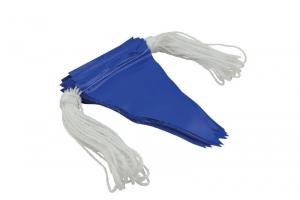 Blue Bunting Flag Line